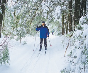 Cross-Country Skiing in Rhinelander