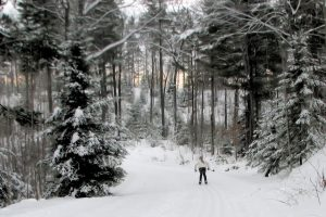 First day on the ski trails. This was the first time my 11-year old daughter Elizabeth went cross-country skiing. We were on the Northwoods Ski Trail. Picture was taken on Jan. 12, 2014.